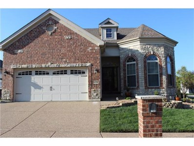154 Blue Water Drive, St Peters, MO 63366 - #: 17082363