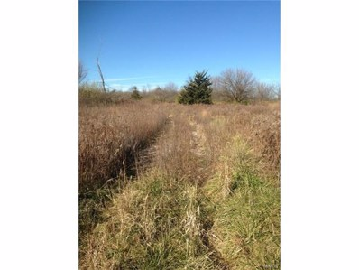 0 Old Route 66, Staunton, IL 62088 - MLS#: 17089157