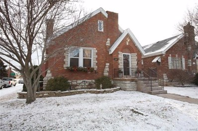 5800 Pernod Avenue, St Louis, MO 63139 - MLS#: 17091069