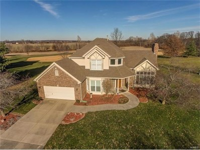 2 Second Fairway Court, Belleville, IL 62220 - #: 17094196