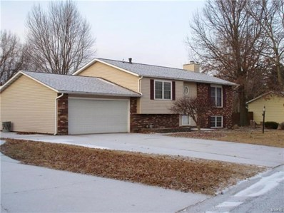 810 W Miller Drive, Staunton, IL 62088 - #: 17094219