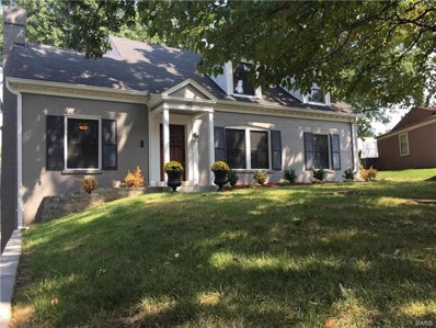 45 Chafford Woods, St Louis, MO 63144 - MLS#: 18002680
