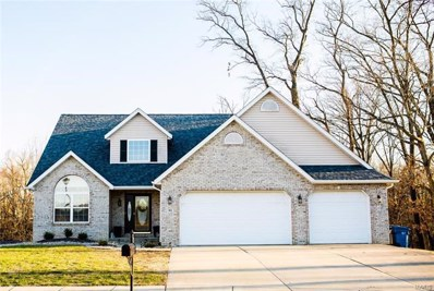 10 Timber Terr, Troy, IL 62294 - #: 18015473