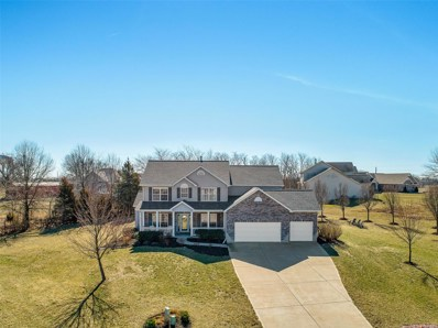 321 Red Wing Court, Troy, MO 63379 - MLS#: 18020972