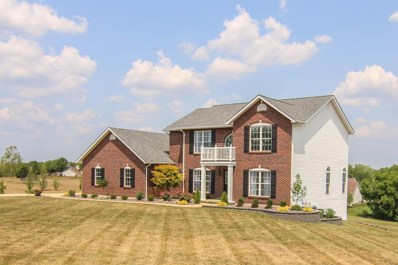 302 Meadow Brook Estates Lane, Wentzville, MO 63385 - MLS#: 18033768