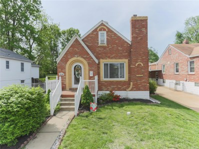 504 W Ripa Avenue, St Louis, MO 63125 - MLS#: 18034299