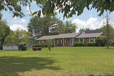 4866 Copenhagen, Farmington, MO 63640 - MLS#: 18041294