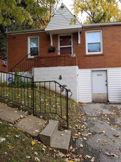 7041 Theodore Avenue, St Louis, MO 63136 - MLS#: 18044948
