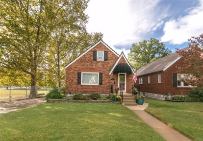 6036 Tholozan Avenue, St Louis, MO 63109 - MLS#: 18046574