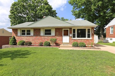 9915 Slevin Lane, St Louis, MO 63123 - MLS#: 18050130