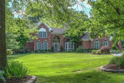 1016 Tidewater Place Court, Town and Country, MO 63017 - MLS#: 18056697