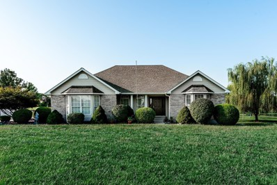 102 Townview Drive, Wentzville, MO 63385 - MLS#: 18060011