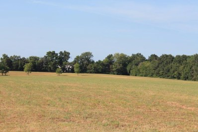 0 Stamer Rd, 21.73 Ac, Wright City, MO 63390 - MLS#: 18064956