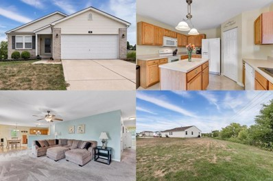 40 Springbrook Court, Moscow Mills, MO 63362 - MLS#: 18066035