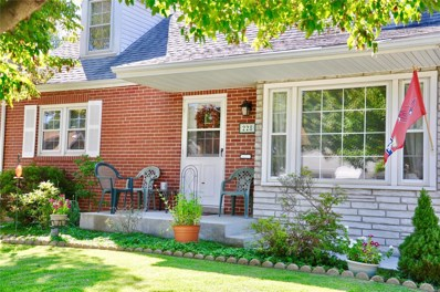 228 Roberta Ave, St Louis, MO 63135 - MLS#: 18071404