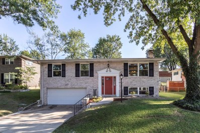 11100 Patrina Court, St Louis, MO 63126 - MLS#: 18071966