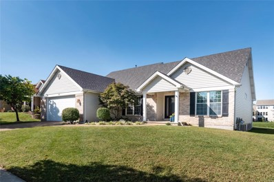 61 Creekside Drive, St Peters, MO 63376 - #: 18078567