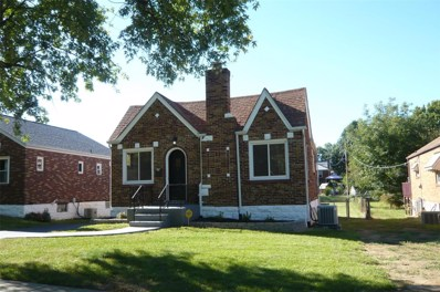 725 Reed Avenue, St Louis, MO 63125 - MLS#: 18078821