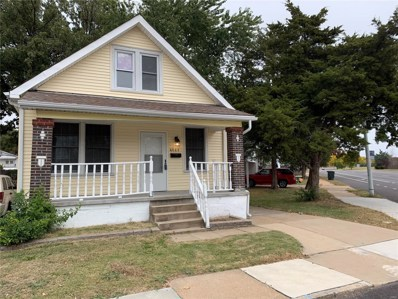 4669 Allemania Street, St Louis, MO 63116 - MLS#: 18081163