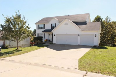 6 Concord Drive, Crystal City, MO 63019 - MLS#: 18081815