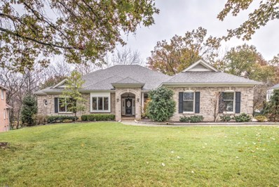 28 Delacroix Place, St Charles, MO 63303 - MLS#: 18090779