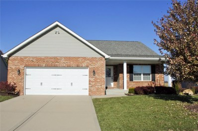 1346 Orchard Lakes Circle, Belleville, IL 62220 - #: 18092920