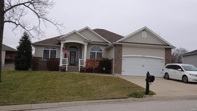 607 Meadow Oaks Drive, St Clair, MO 63077 - MLS#: 18096431