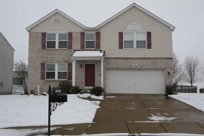 205 Turning Leaf Circle, Belleville, IL 62221 - #: 19002666
