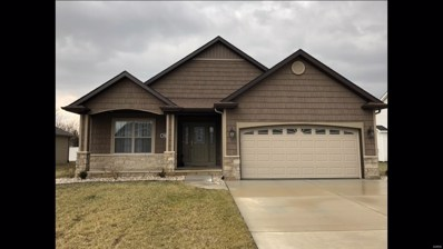 5550 South Woods Manor Drive, Smithton, IL 62285 - #: 19006846