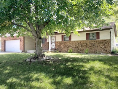 128 Woods Mill Drive, Staunton, IL 62088 - #: 19007907