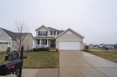 1335 Orchard Lakes Circle, Belleville, IL 62220 - #: 19008201