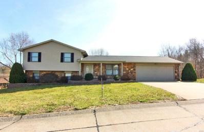 1208 Lakewood Drive, Jackson, MO 63755 - #: 19010657