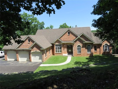 800 Wildflower Valley Drive, High Ridge, MO 63049 - MLS#: 19011418