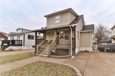 3847 Bates, St Louis, MO 63116 - MLS#: 19016524