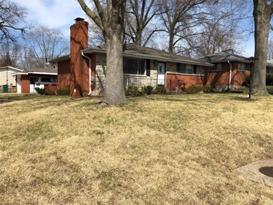 1149 Reale Avenue, Unincorporated, MO 63138 - MLS#: 19022820