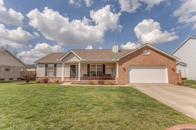 1229 Antique Lane, Mascoutah, IL 62258 - #: 19024462