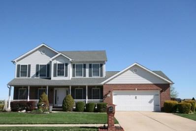 501 Whetstone Lane, Mascoutah, IL 62258 - #: 19025712