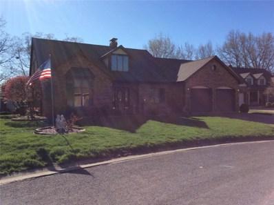 135 Sunfish Drive, Highland, IL 62249 - #: 19026676