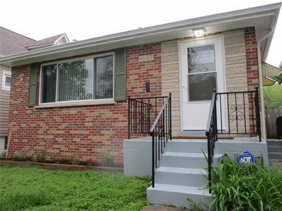 4087 Burgen Avenue, St Louis, MO 63116 - MLS#: 19030405