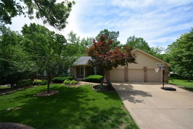 19 Laurel Oaks Court, Lake St Louis, MO 63367 - MLS#: 19038511