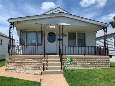 6033 Fyler Avenue, St Louis, MO 63139 - MLS#: 19039062