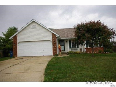 125 Turtle, Troy, IL 62294 - #: 19040018