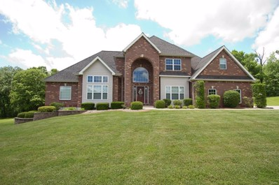 251 Lake Forest Drive, Troy, MO 63379 - MLS#: 19040301