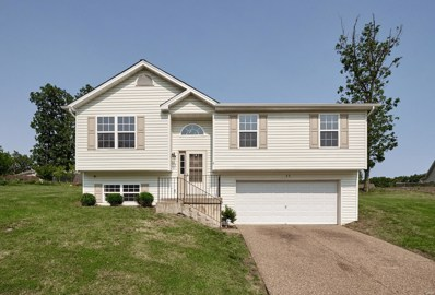 22 Shady Tree, Winfield, MO 63389 - MLS#: 19040325