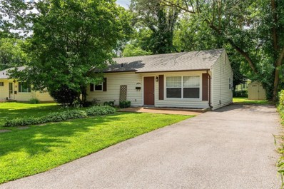 109 Dornell Drive, St Louis, MO 63119 - MLS#: 19048328