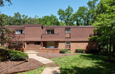 13453 Coliseum Drive UNIT B, Chesterfield, MO 63017 - MLS#: 19048350