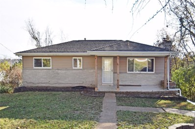 3699 E Lakeview Drive, House Springs, MO 63051 - #: 19068207