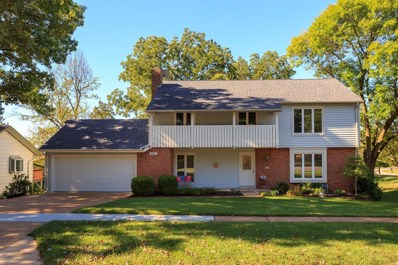 685 Henry Avenue, Manchester, MO 63011 - #: 19072118