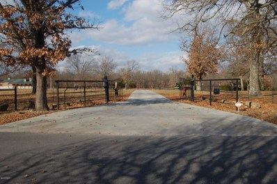 8258 Holly Road, Neosho, MO 64850 - MLS#: 185659