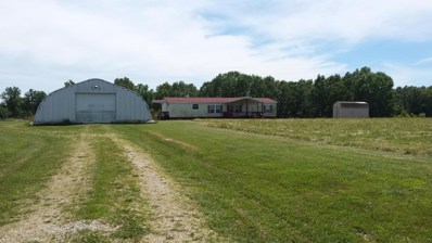 461 Sarvis Point Road, Seymour, MO 65746 - MLS#: 60052438